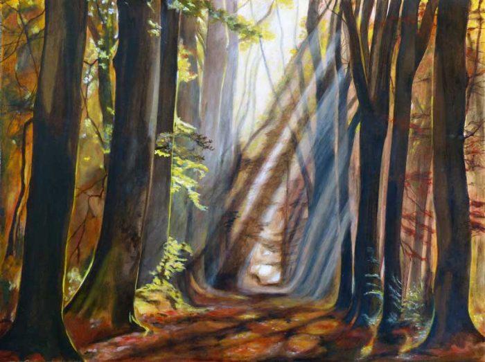 Yolande Bernard 2017 - Lumière et forêt (II)