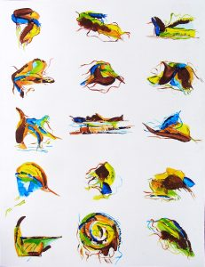De la biodiversité en peinture.